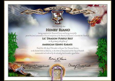 American Kenpo Karate Professionals – Little Dragons Lower Rank Certificate