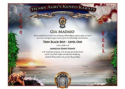 HAKK – Teen Black Belt Certificate