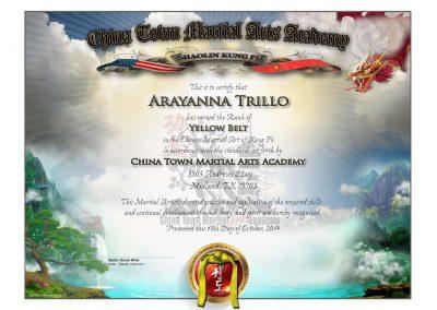 Chinatown Martial Arts – Lower Rank Sample