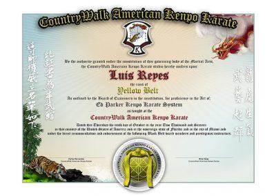 CountryWalk Kenpo Karate – Lower Rank Sample