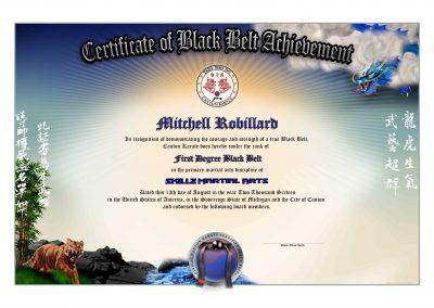 Canton Karate – SKILLZ Martial Arts – Black Belt Certificate Sample