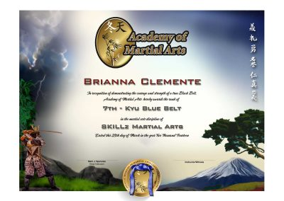 Academy of Martial Arts – Lower Rank Certificate