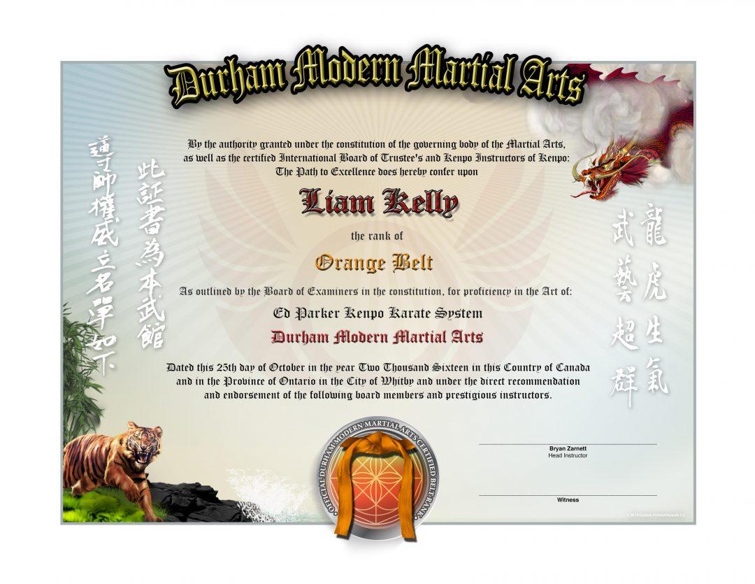 Durham Modern Martial Arts Lower Rank Certificate