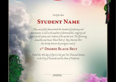 Key Martial Arts – Black Belt Certificate