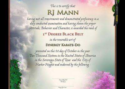 Synergy Karate Academy – Black Belt Certificate