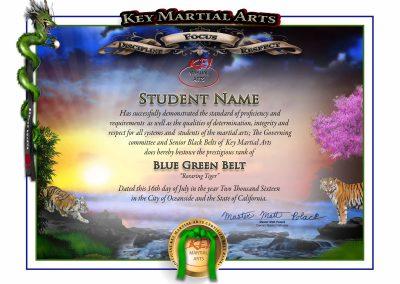 Key Martial Arts – Junior Lower Rank – Blue/Green Belt