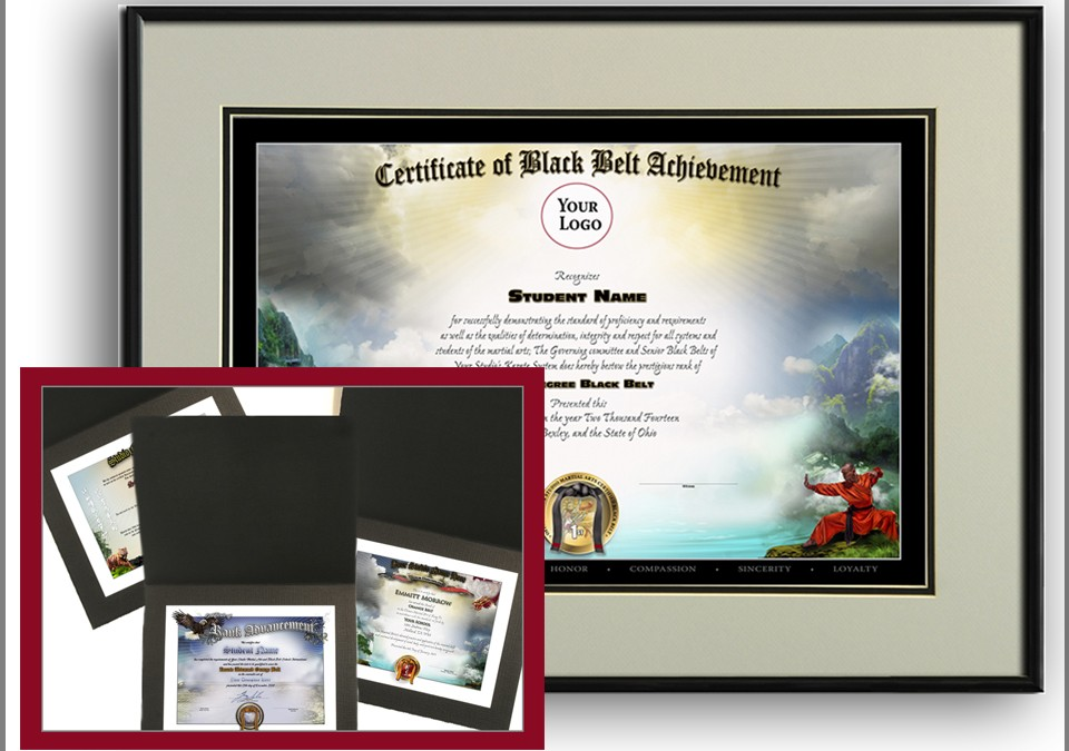 The Importance of Awards, Certificates and Diplomas in the Martial Arts Industry