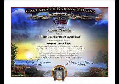 Callahan's Karate Studio – Junior Black Belt Sample