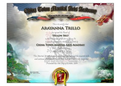 Chinatown Martial Arts – Lower Rank Sample
