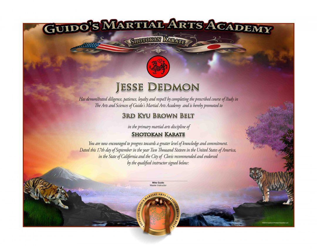 Guido's Upper Rank – Brown Belt Certificate