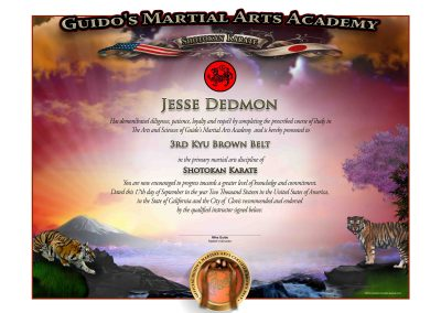 Guido's Upper Rank – Brown Belt Certificate