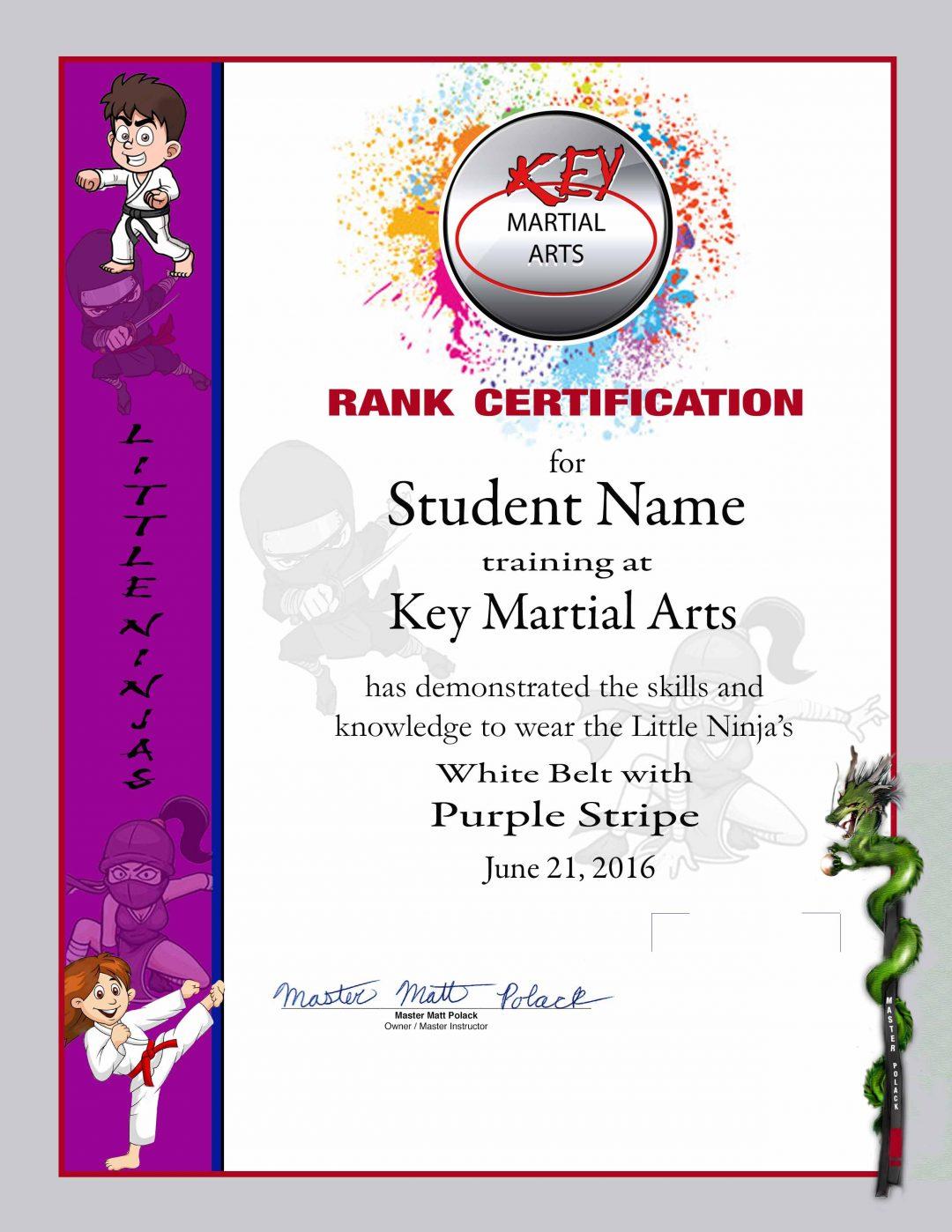 Key Martial Arts – Lower Rank Purple Belt