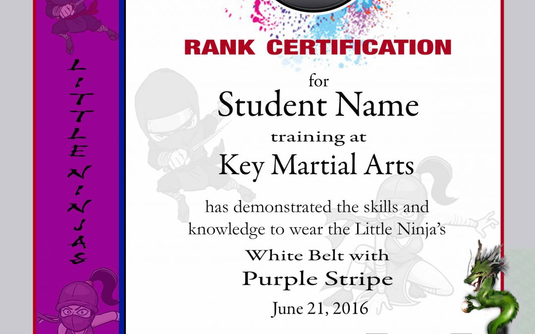 Key Martial Arts – Lower Rank Purple Belt
