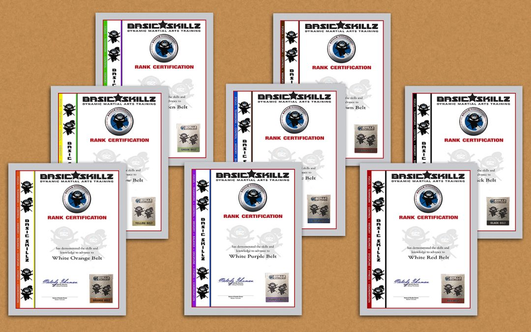 SKILLZ Martial Arts Licensed Belt Rank Certificates – Web Page is Live